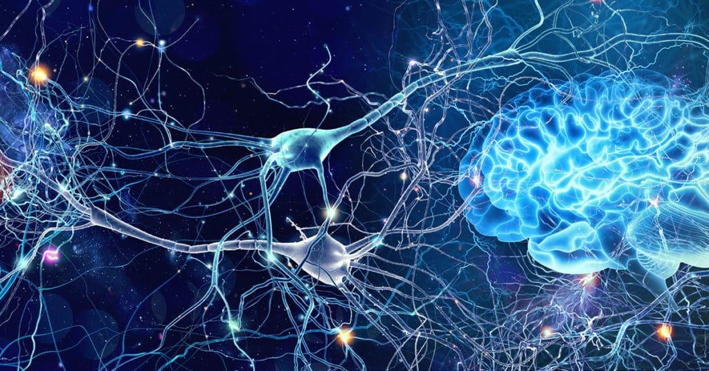 gérer ses émotions neurosciences